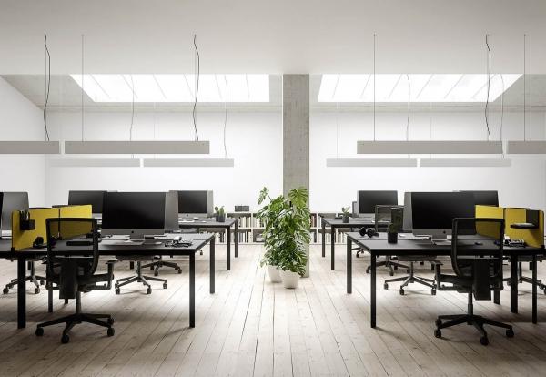 Cinquanta Offices